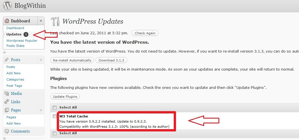 How To Update WordPress Plugins Using CPanel