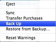 backup restore iPad data